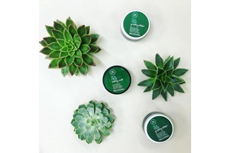 Scent-sational Grooming with Tea Tree