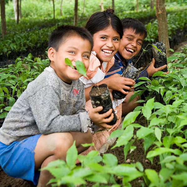 Children Planting Nuts