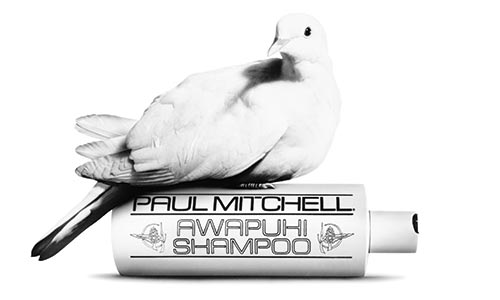 White dove on Paul Mitchell Awapuhi Shampoo bottle
